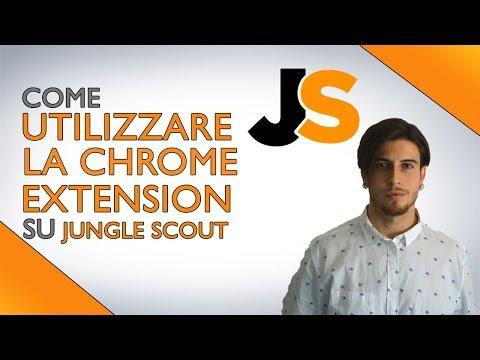 ✅ JUNGLE SCOUT - Miglior Software Per La Ricerca Prodotto Parte 1 #amazonfbaitalia