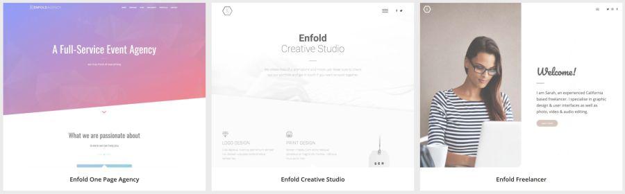 Enfold demo (2)
